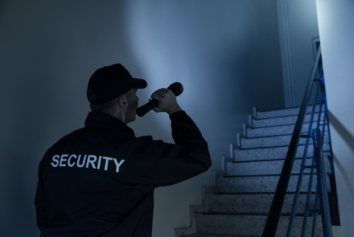 Ein Sicherheitsmann guckt nach dem Rechten.