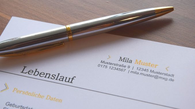 Lebenslauf von Mila Muster mit Kugelschreiber