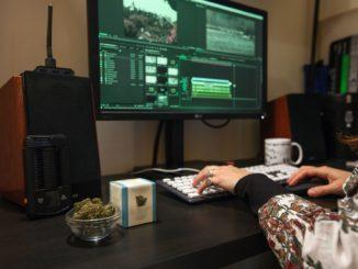 Frau sitzt vorm PC mit CBD Blüten in Glasschüssel