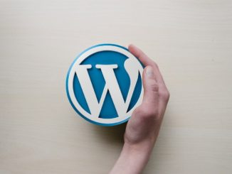 Wordpress Logo wird von Hand festgehalten